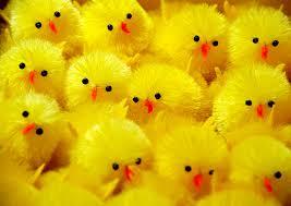 Vrolijke Pasen!